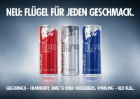 Red Bull Energy Drink - The Silver Edition 24 x 0,25 Liter